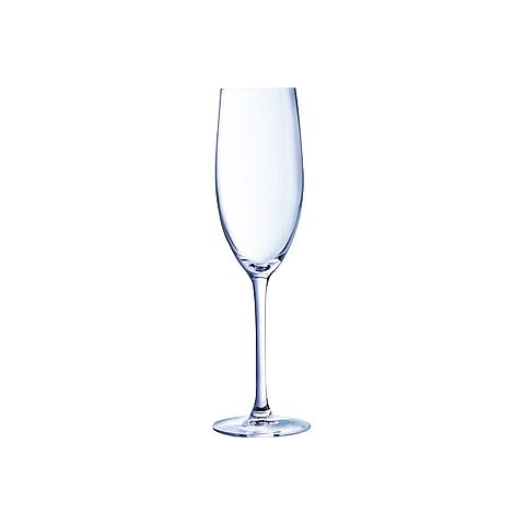 6122203952 Chef & Sommelier cabernet champagne flute 24  ***
